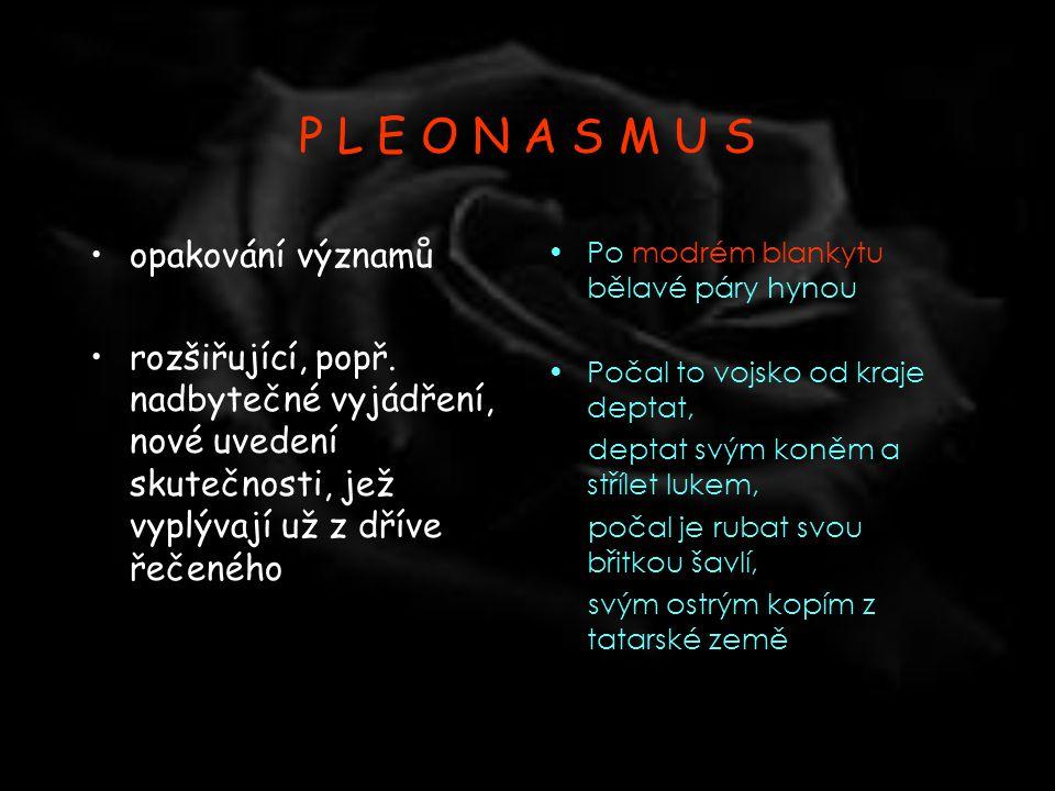 P L E O N A S M U S opakování významů