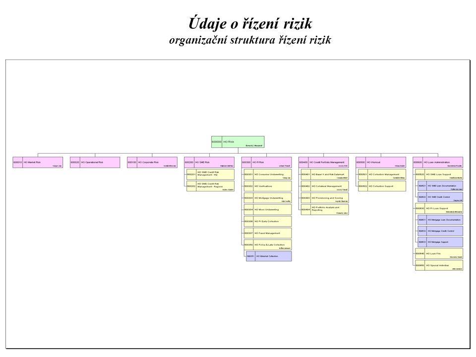 Údaje o řízení rizik organizační struktura řízení rizik