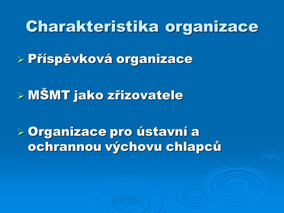 Charakteristika organizace