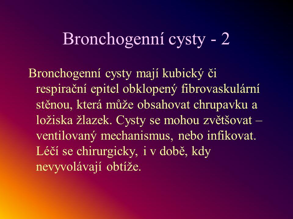 Bronchogenní cysty - 2
