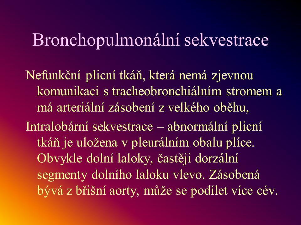 Bronchopulmonální sekvestrace