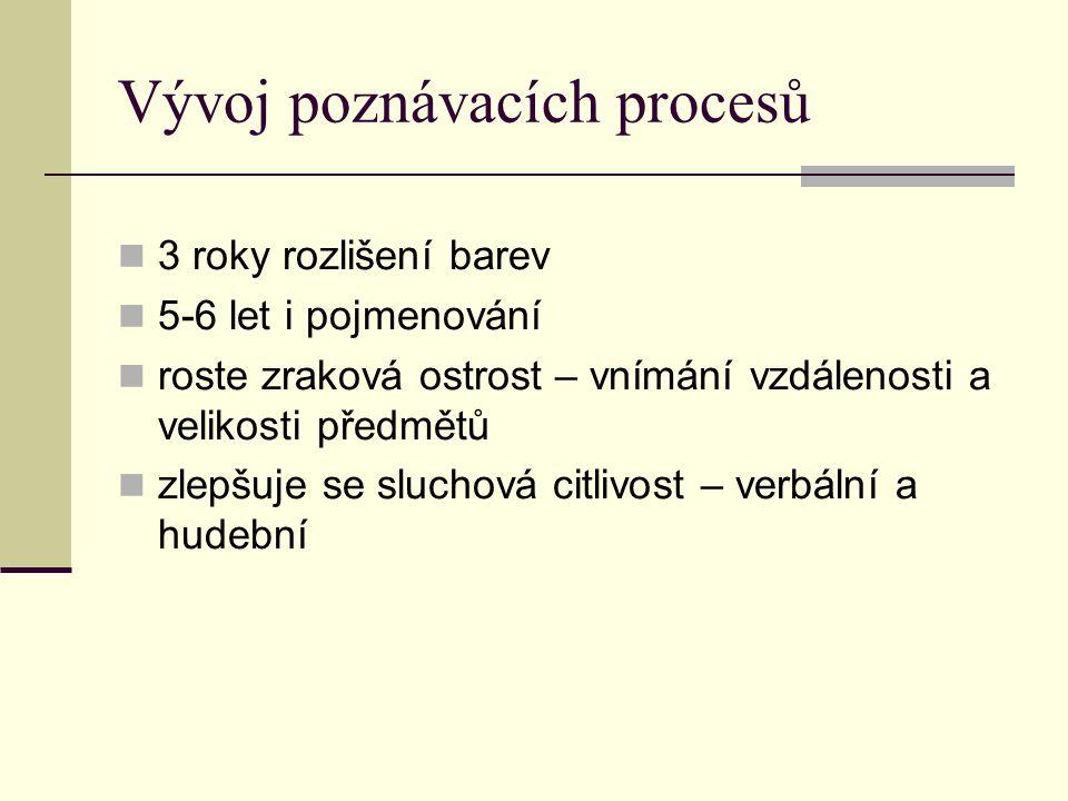Vývoj poznávacích procesů