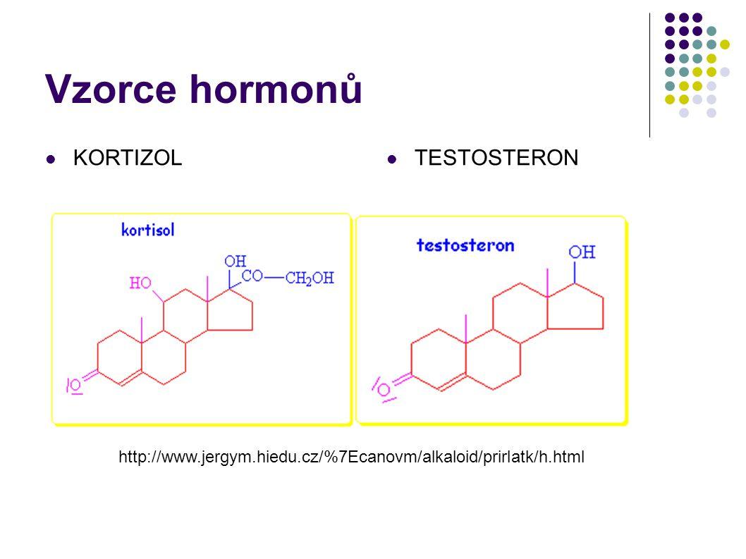 Vzorce hormonů KORTIZOL TESTOSTERON