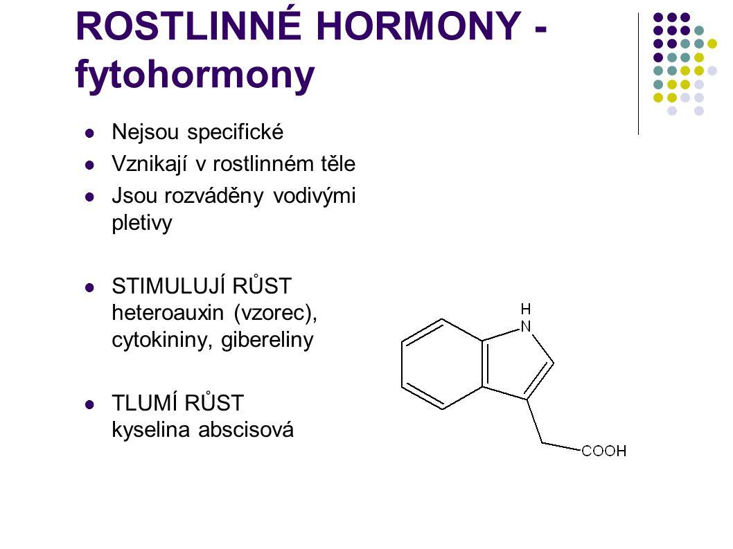 ROSTLINNÉ HORMONY - fytohormony
