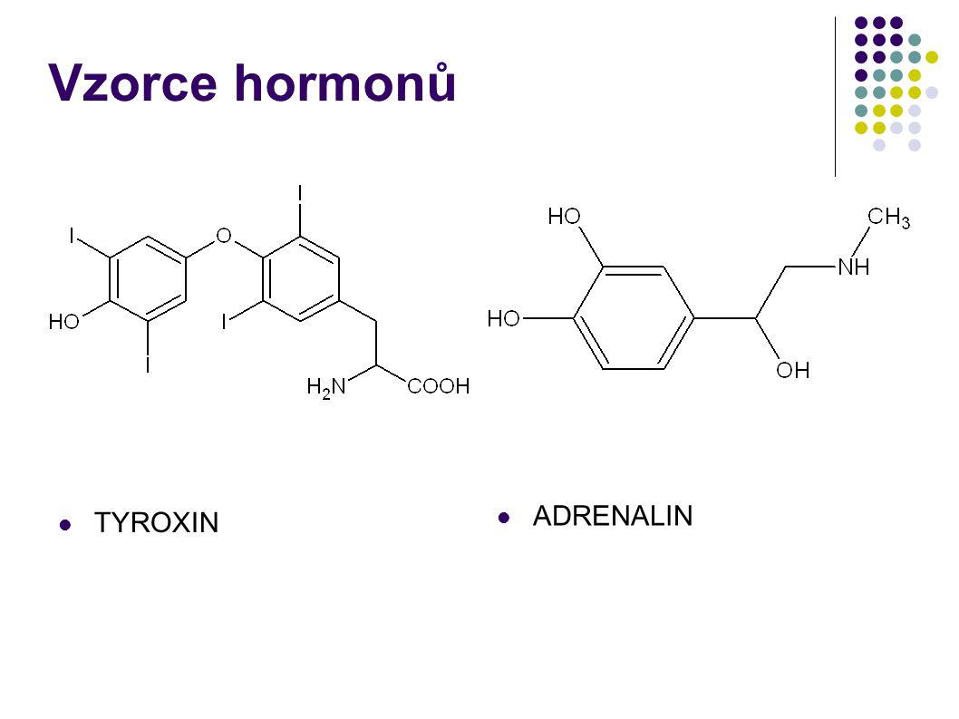 Vzorce hormonů ADRENALIN TYROXIN