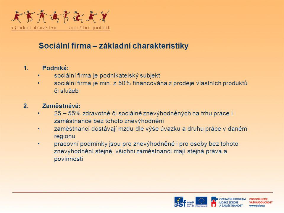 Sociální firma – základní charakteristiky