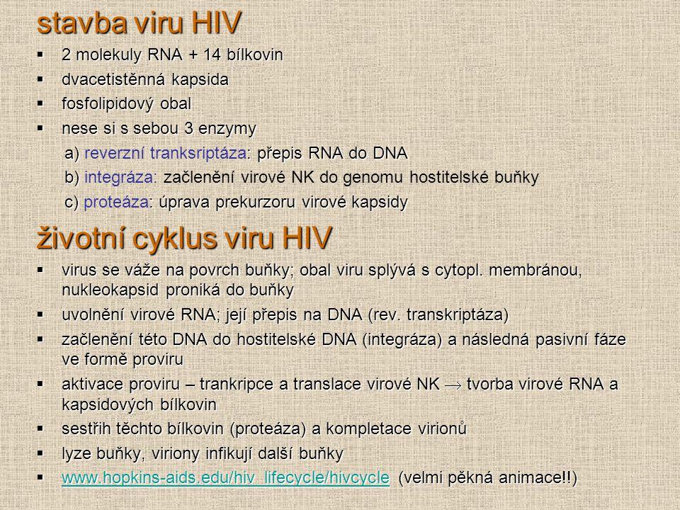 životní cyklus viru HIV