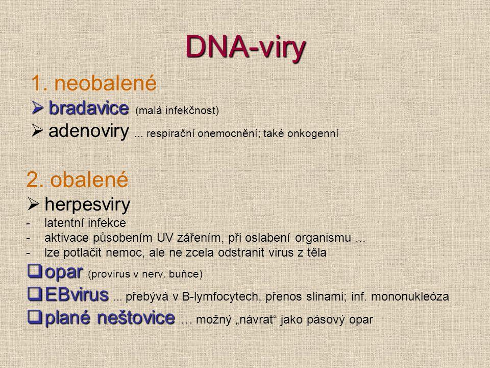 DNA-viry 1. neobalené 2. obalené bradavice (malá infekčnost)