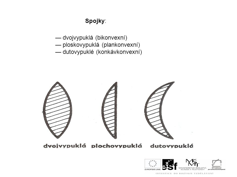 Spojky: — dvojvypuklá (bikonvexní) — ploskovypuklá (plankonvexní) — dutovypuklé (konkávkonvexní)