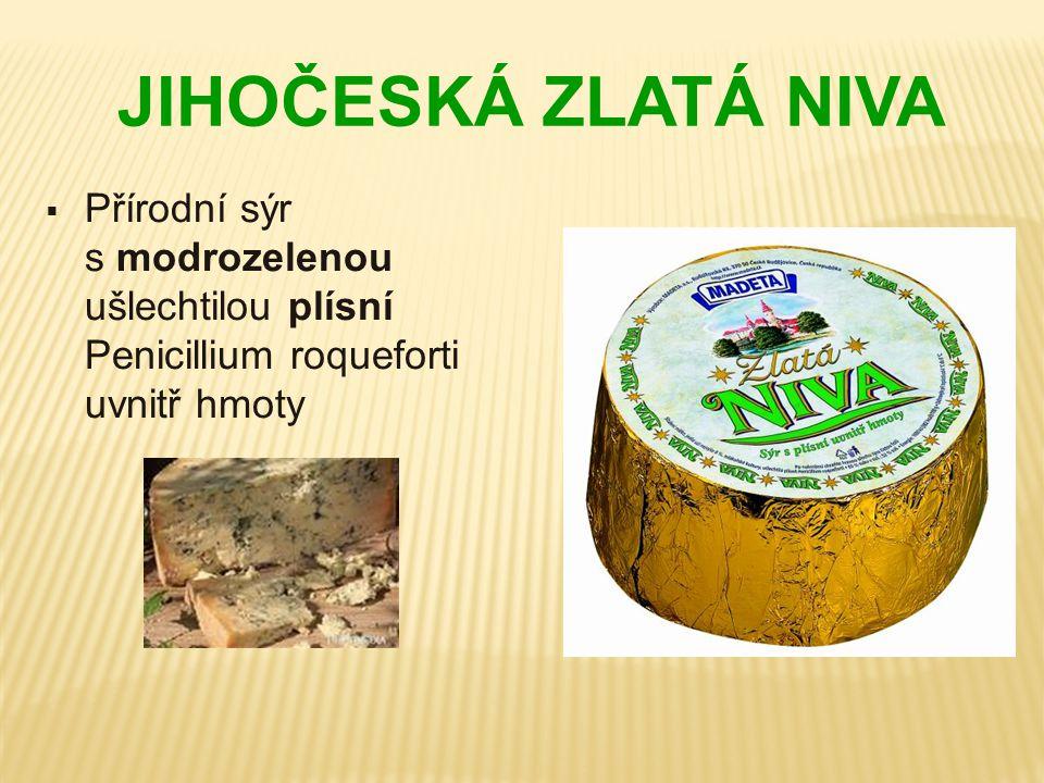 JIHOČESKÁ ZLATÁ NIVA Přírodní sýr s modrozelenou ušlechtilou plísní Penicillium roqueforti uvnitř hmoty.