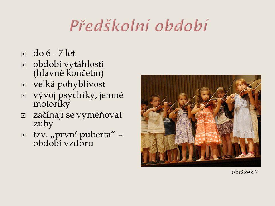 Předškolní období do 6 - 7 let období vytáhlosti (hlavně končetin)