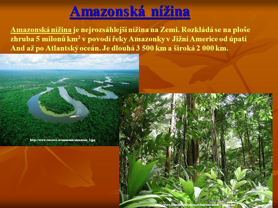 Amazonská nížina Amazonská nížina je nejrozsáhlejší nížina na Zemi. Rozkládá se na ploše.