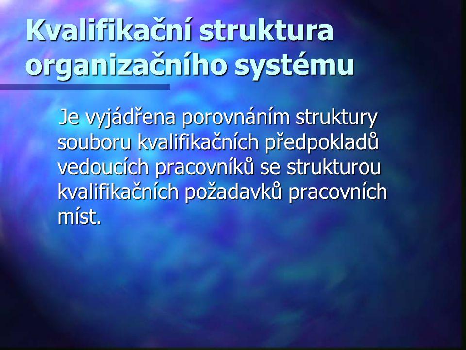 Kvalifikační struktura organizačního systému