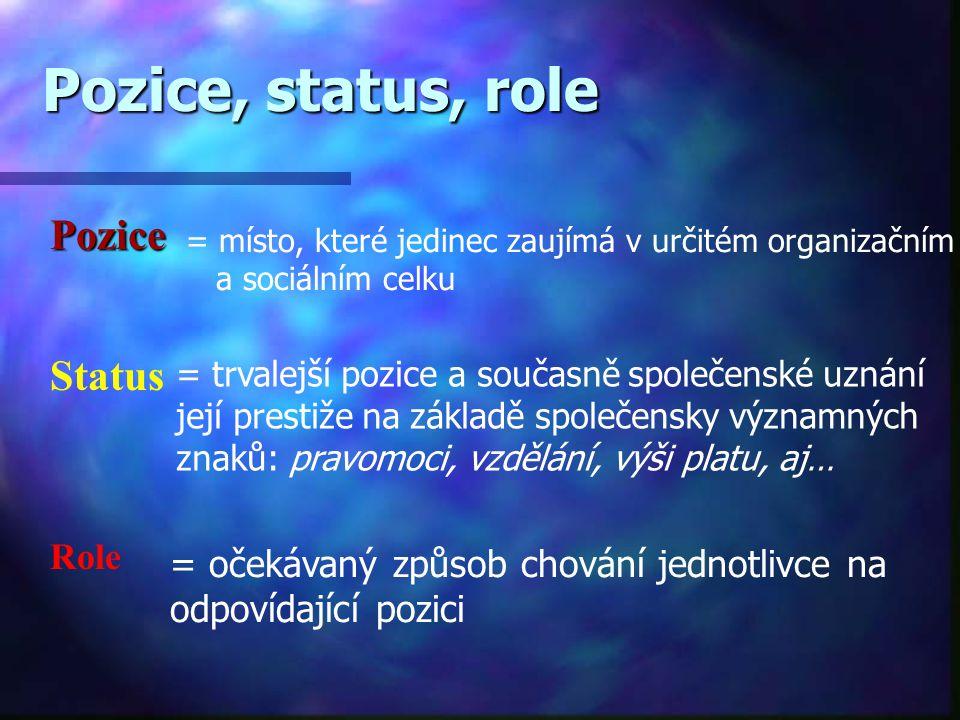Pozice, status, role Pozice Status Role