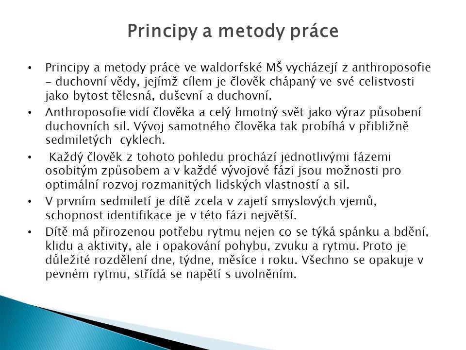 Principy a metody práce