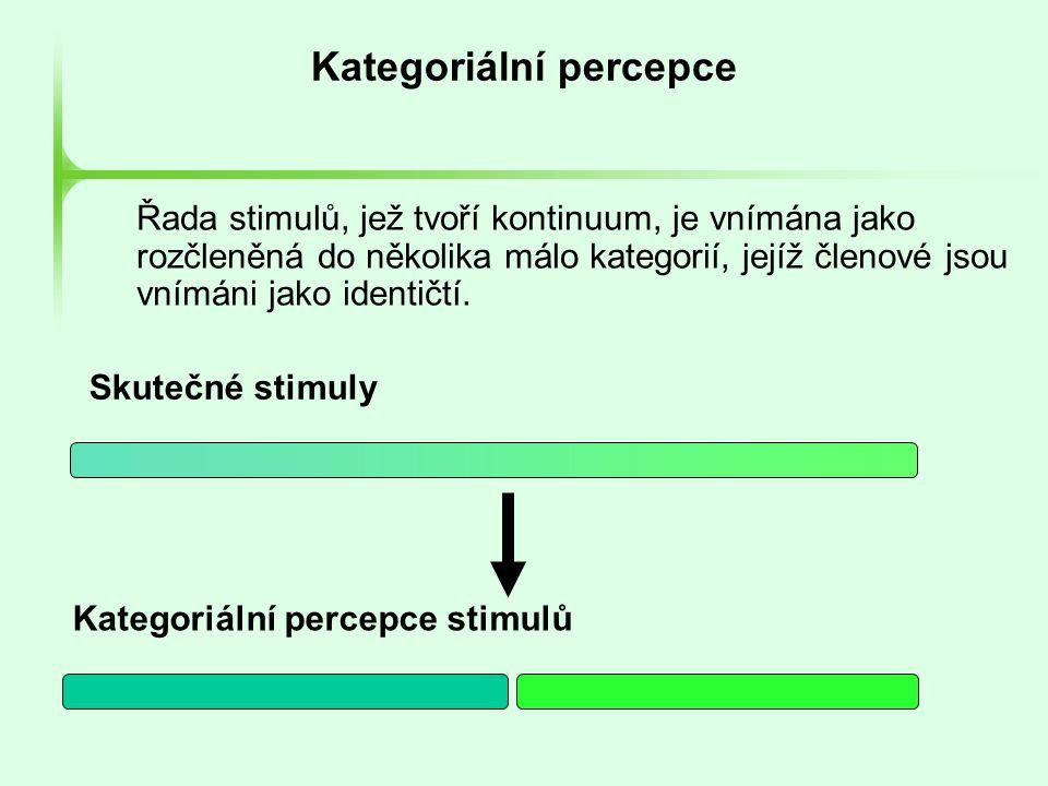 Kategoriální percepce