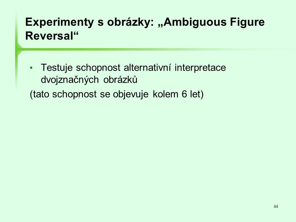 """Experimenty s obrázky: """"Ambiguous Figure Reversal"""