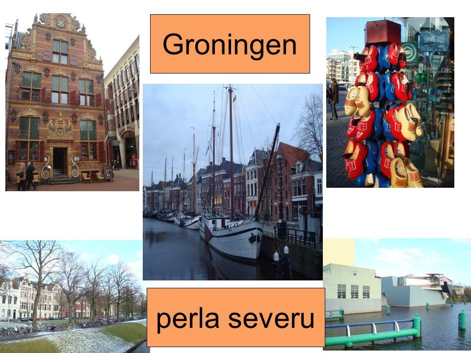 Groningen perla severu