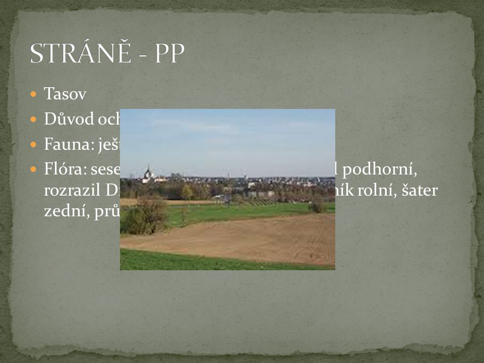 STRÁNĚ - PP Tasov Důvod ochrany: pastviny