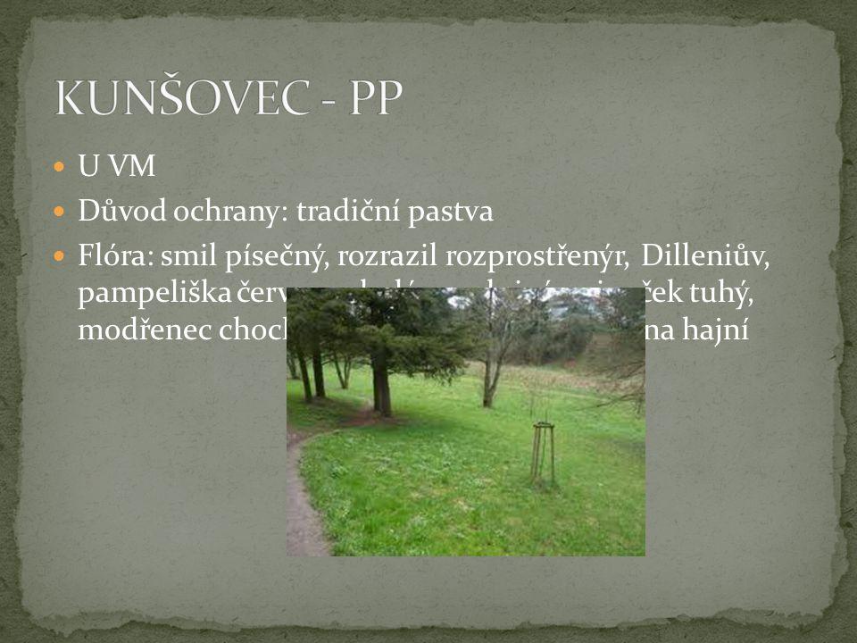 KUNŠOVEC - PP U VM Důvod ochrany: tradiční pastva
