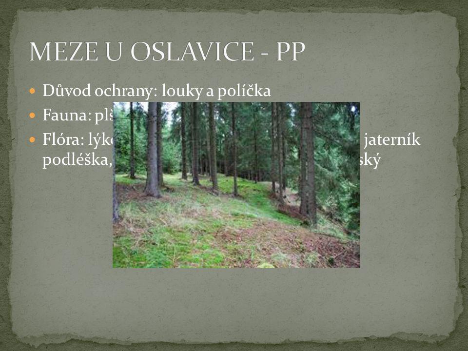 MEZE U OSLAVICE - PP Důvod ochrany: louky a políčka