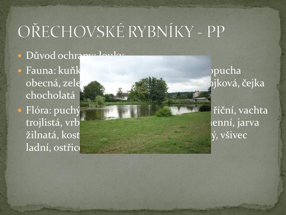 OŘECHOVSKÉ RYBNÍKY - PP