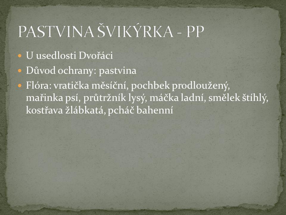 PASTVINA ŠVIKÝRKA - PP U usedlosti Dvořáci Důvod ochrany: pastvina