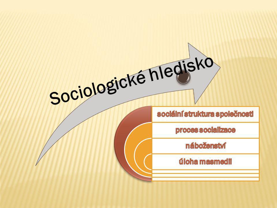 sociální struktura společnosti