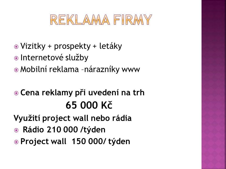 Reklama firmy Vizitky + prospekty + letáky Internetové služby
