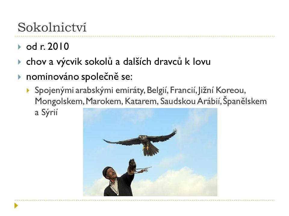 Sokolnictví od r. 2010 chov a výcvik sokolů a dalších dravců k lovu