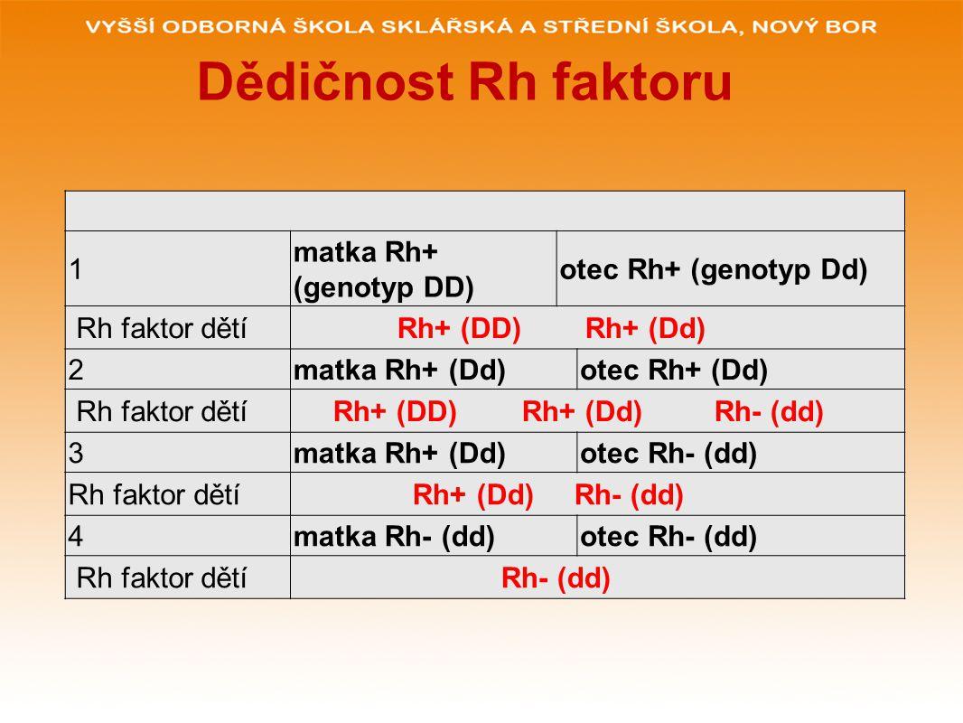 Dědičnost Rh faktoru 1 matka Rh+ (genotyp DD) otec Rh+ (genotyp Dd)