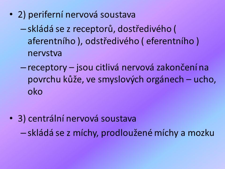 2) periferní nervová soustava