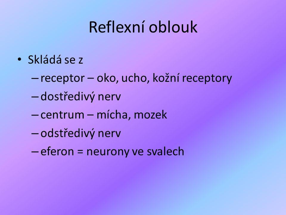 Reflexní oblouk Skládá se z receptor – oko, ucho, kožní receptory