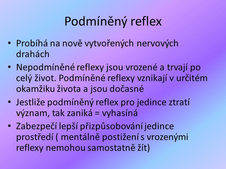 Podmíněný reflex Probíhá na nově vytvořených nervových drahách