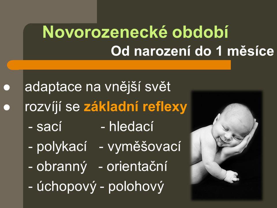 Novorozenecké období Od narození do 1 měsíce adaptace na vnější svět