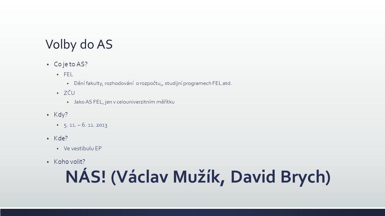 NÁS! (Václav Mužík, David Brych)