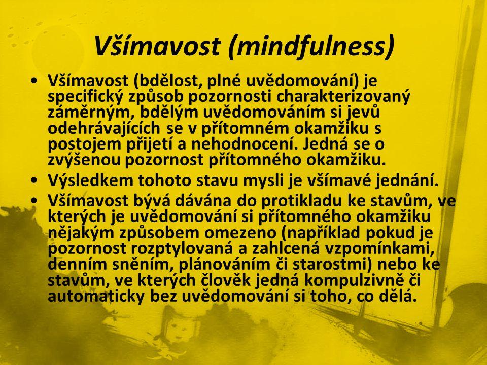 Všímavost (mindfulness)