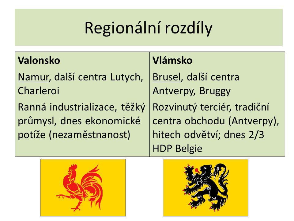 Regionální rozdíly Valonsko Namur, další centra Lutych, Charleroi Ranná industrializace, těžký průmysl, dnes ekonomické potíže (nezaměstnanost)