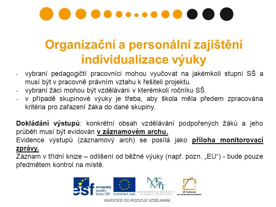 Organizační a personální zajištění individualizace výuky