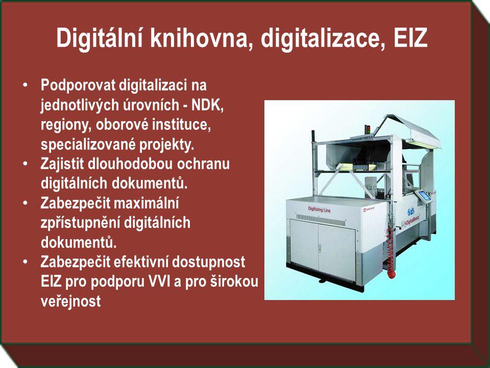 Digitální knihovna, digitalizace, EIZ