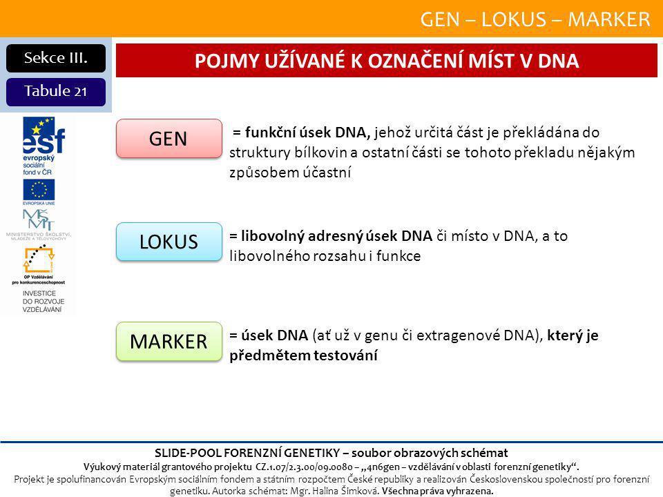 POJMY UŽÍVANÉ K OZNAČENÍ MÍST V DNA
