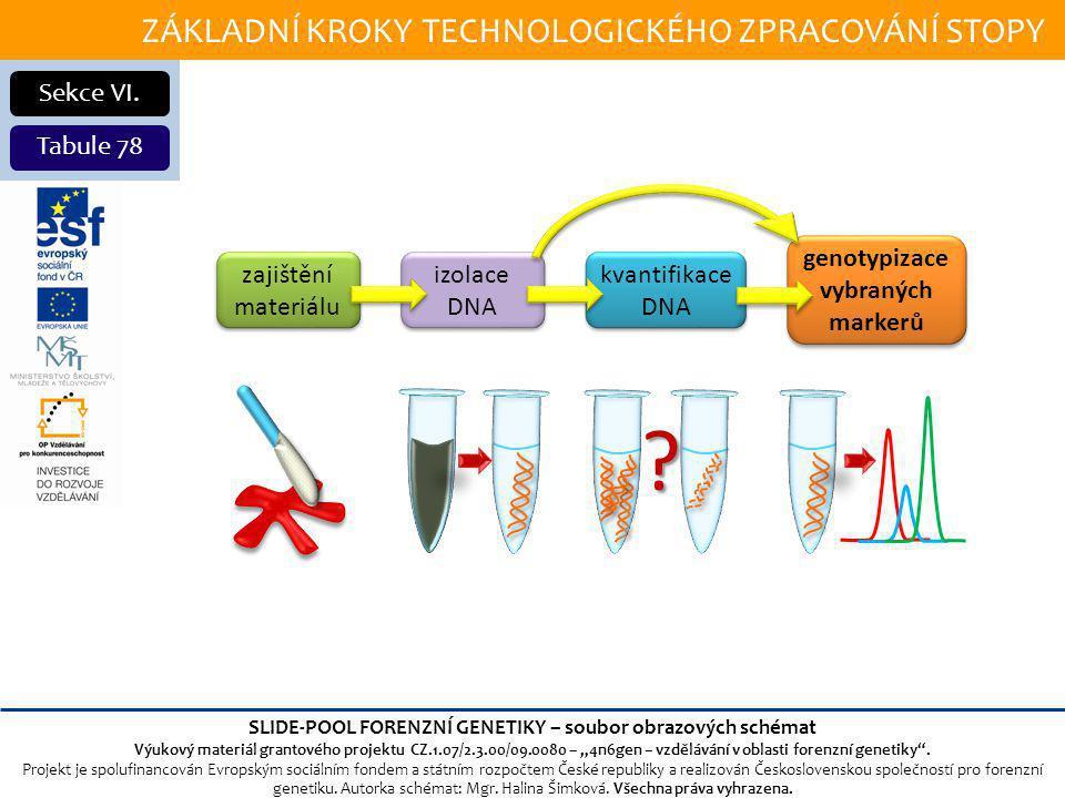 genotypizace vybraných markerů