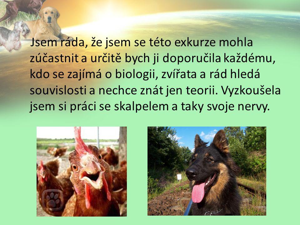 Jsem ráda, že jsem se této exkurze mohla zúčastnit a určitě bych ji doporučila každému, kdo se zajímá o biologii, zvířata a rád hledá souvislosti a nechce znát jen teorii.