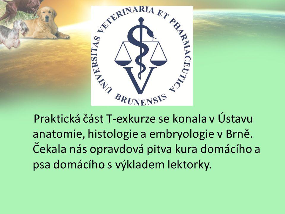 Praktická část T-exkurze se konala v Ústavu anatomie, histologie a embryologie v Brně.