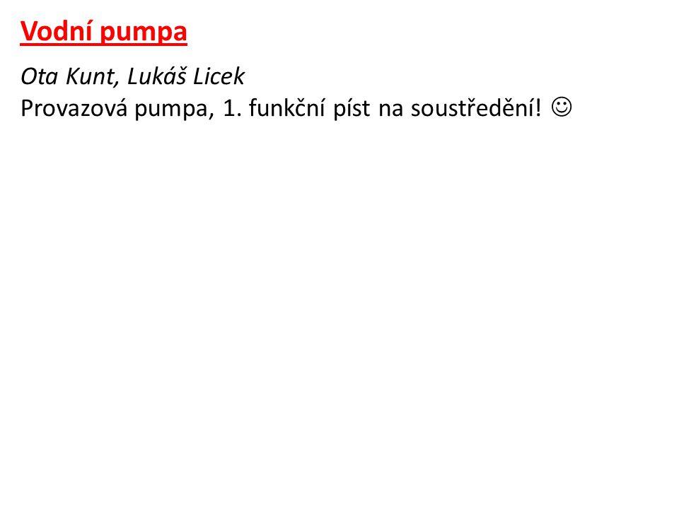 Vodní pumpa Ota Kunt, Lukáš Licek