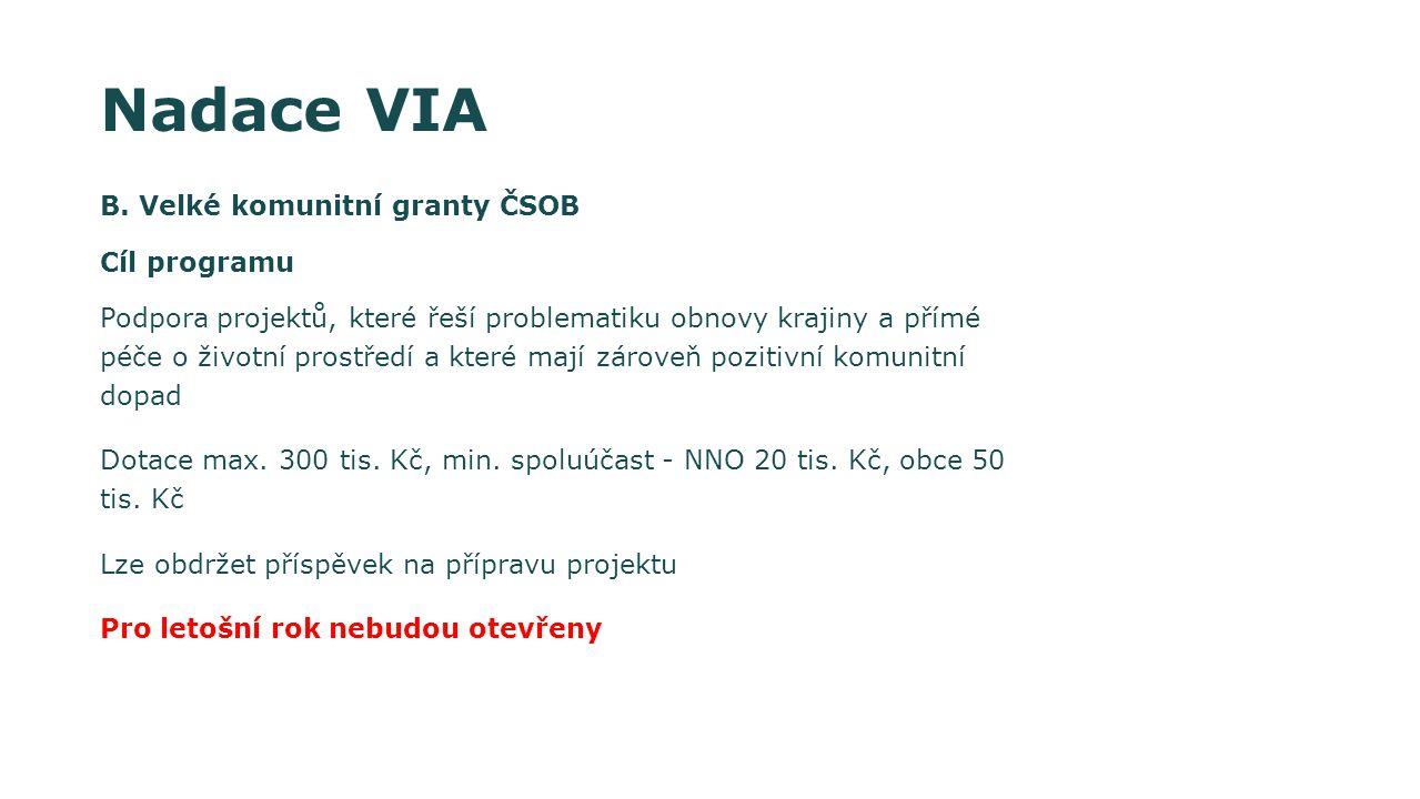 Nadace VIA B. Velké komunitní granty ČSOB Cíl programu