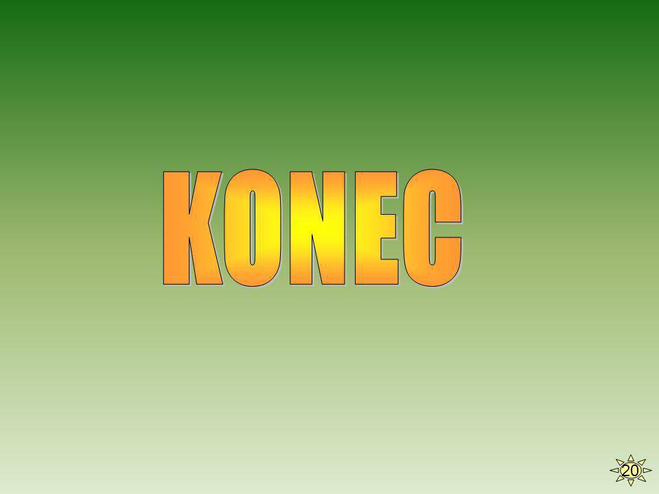 KONEC 20