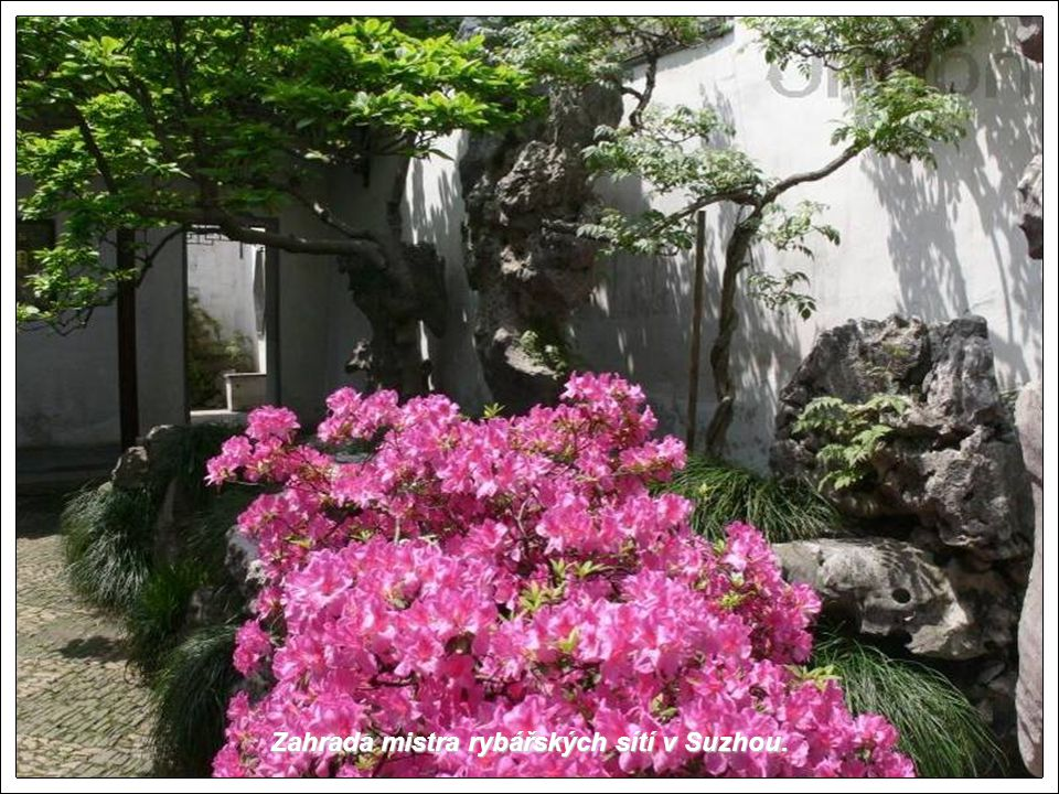 Zahrada mistra rybářských sítí v Suzhou.