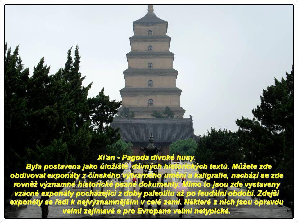Xi an - Pagoda divoké husy