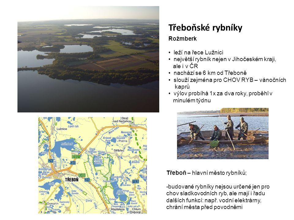 Třeboňské rybníky Rožmberk leží na řece Lužnici